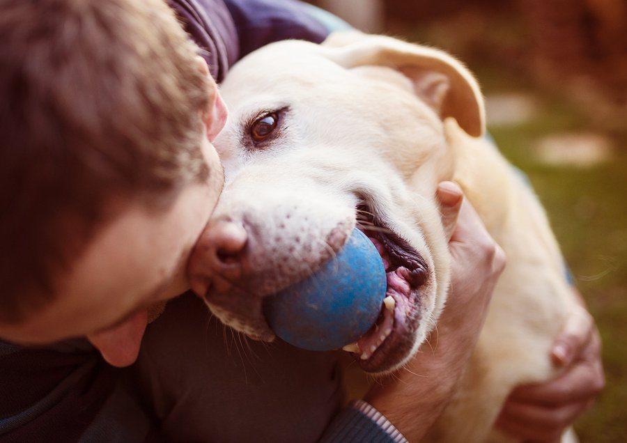 bigstock Man and dog 83502233 1 - Dog Bite Prevention